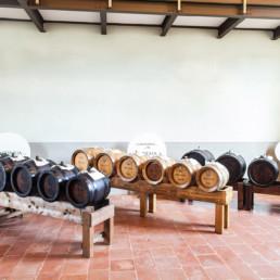 Castello Campori Acetaia Comunale